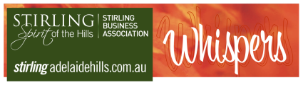 Stirling Business news header